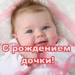 ybqQvDcE9V.jpg